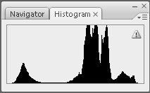 Common Raven Histogram