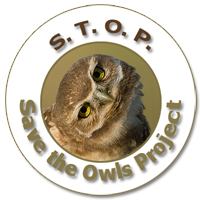 Save the Owls Project