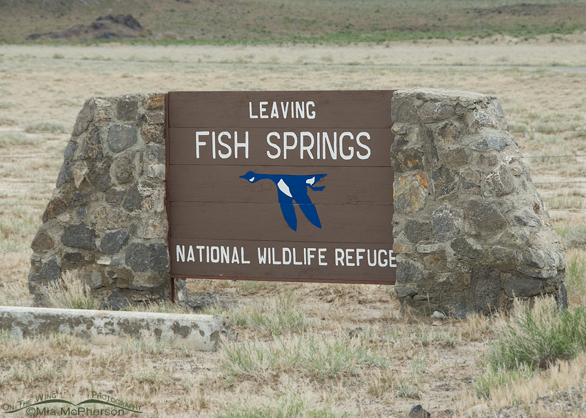Fish Springs National Wildlife Refuge