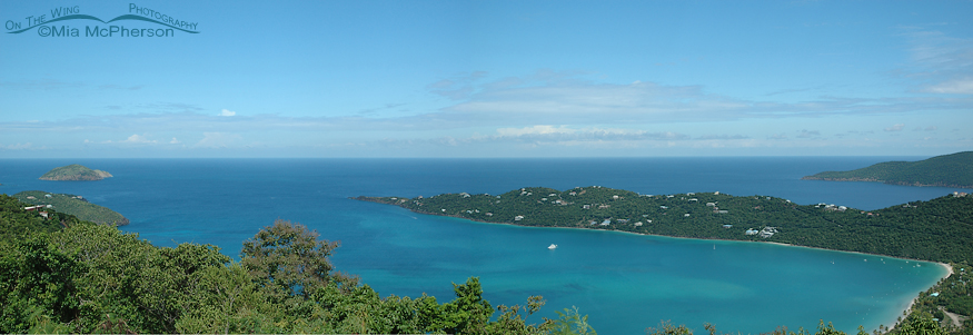 Amazing blues of Magens Bay, Saint Thomas, USVI