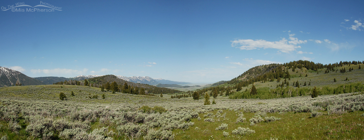 Panoramic view facing west