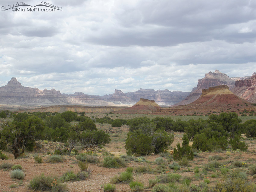 The San Rafael Swell area is a unique geological treasure
