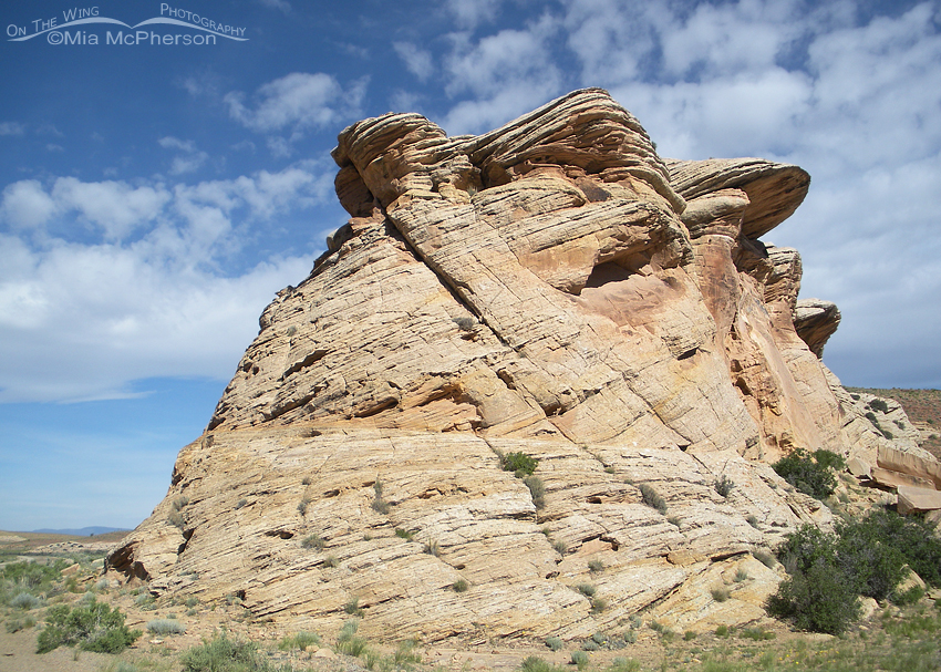 san-rafael-swell-sculpted-by-time-mia-mcpherson-2259