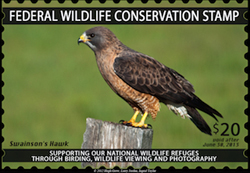 Federal Wildlife Conservation Stamp