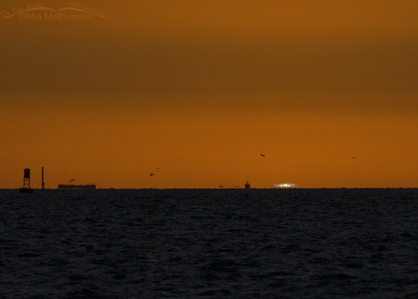 Green Flash over the Gulf of Mexico from Fort De Soto