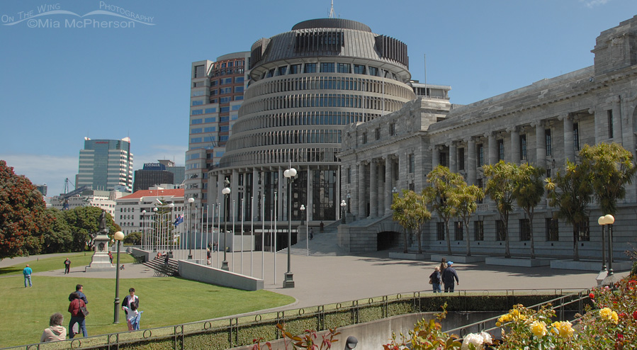 Te Papa or the Beehive is a landmark building in the heart of Wellington