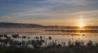 Morning Mist at the Lower Lake of Red Rock Lakes NWR