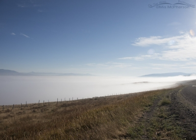 Centennial Valley completely filled with fog