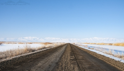 North side of the Bear River MBR auto tour route in winter