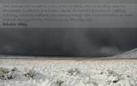 Antelope Island in a Winter Storm ~ Edward Abbey Quote