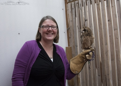 Nikki Wayment with Galileo the Short-eared Owl in his mew