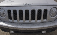 Midges on the front of my Jeep