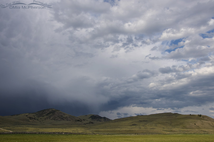 Stormy Skies over Montana