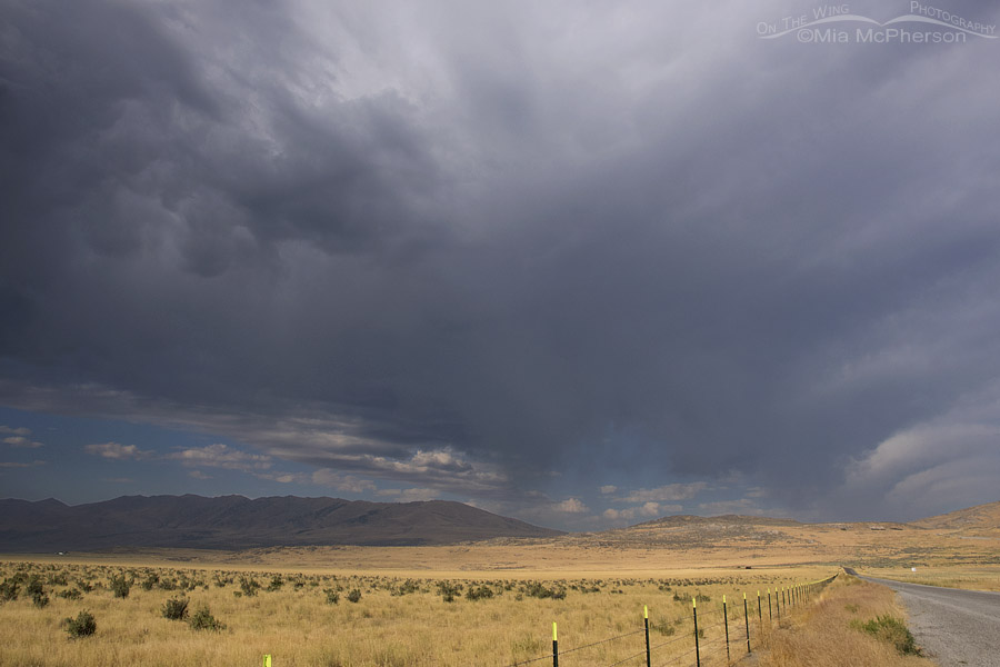 Stormy weather over Box Elder County