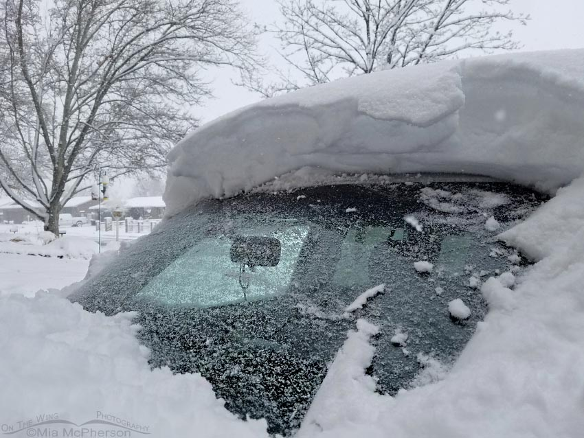 Snow on my Jeep on February 19, 2018 at 8:48 am