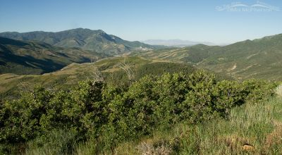 Looking southwest from the Mount Nebo Scenic Byway
