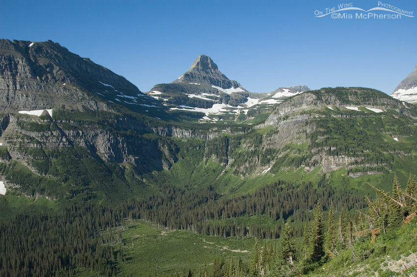 Looking down into a valley at Glacier National Park