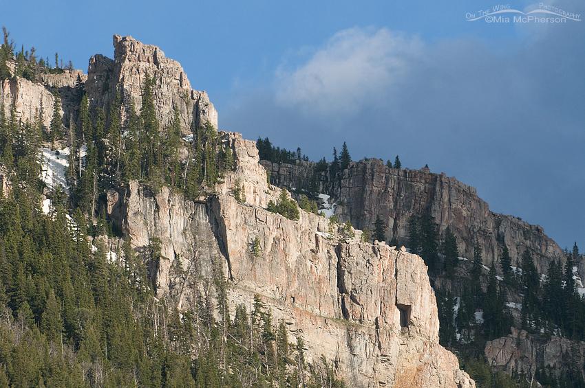 Centennial Mountain rock face