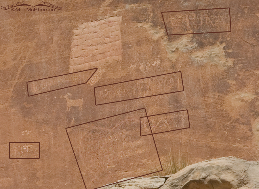 Defaced Capitol Reef Anthropomorphs Petroglyphs