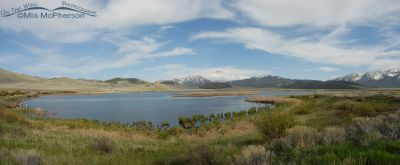 Wigeon Pond, Red Rock Lakes National Wildlife Refuge, Montana