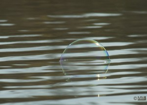 Bubble on the water