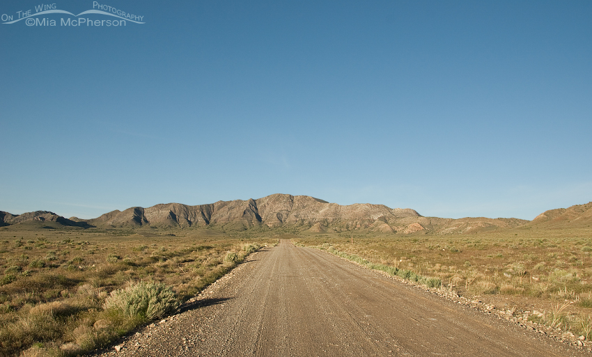 Road through the west desert of Utah on the way to Fish Springs NWR