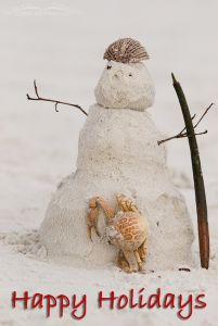 Snow (sand) Man - Florida Style 2008
