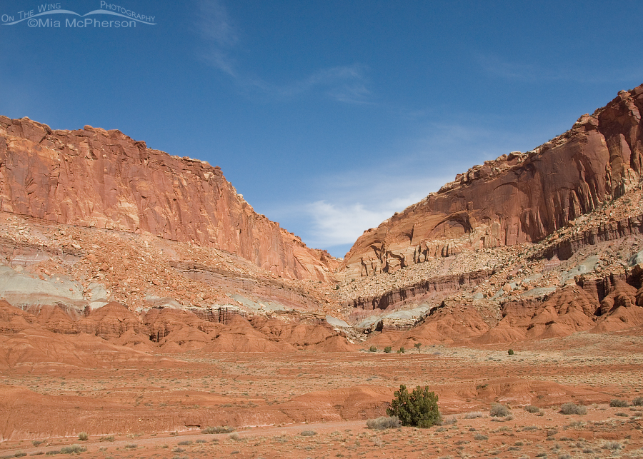 Utah - The State with Billions of Views