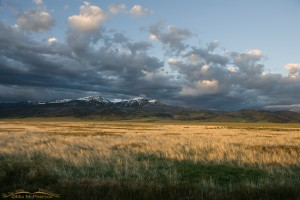 Sunrise and stormy skies over the Centennial Mountains