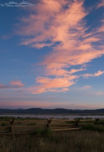 Pink cloud sunrise