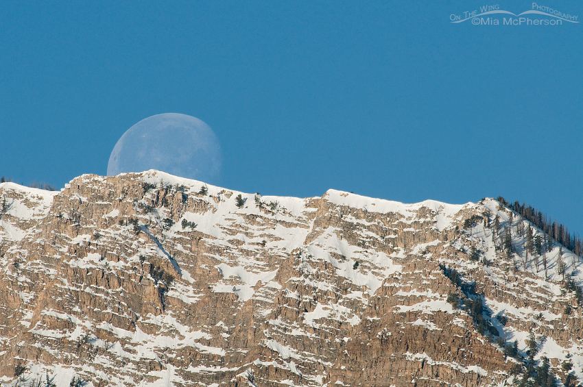 Moon setting over the Stansbury Mountains