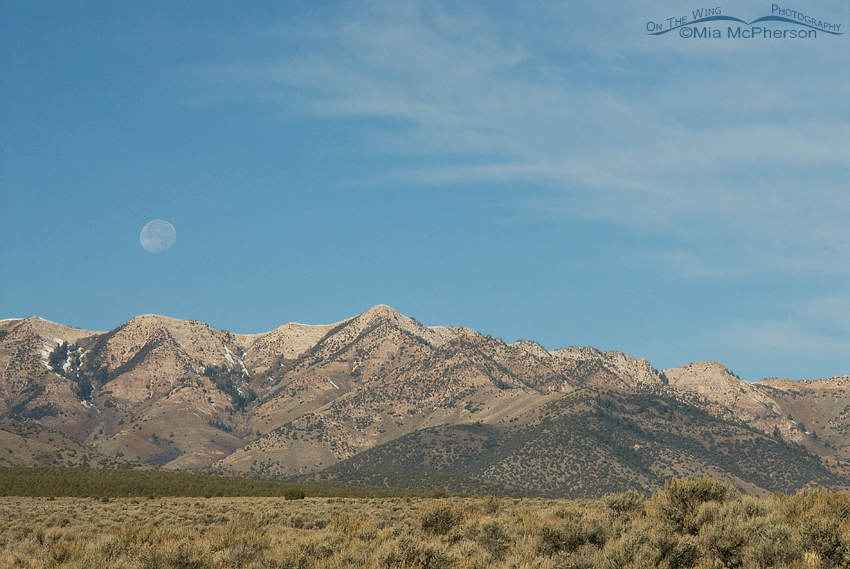 The moon setting over Tooele County
