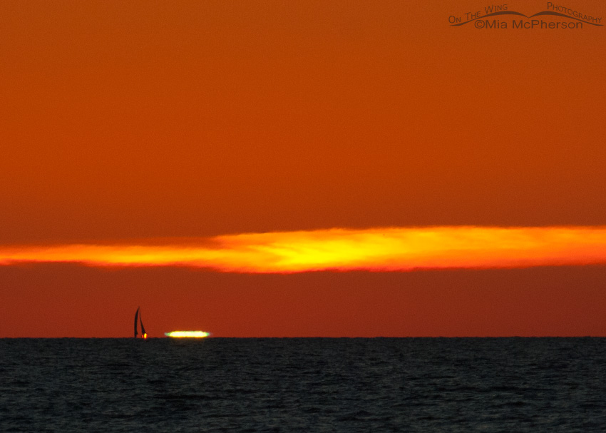Green Flash I