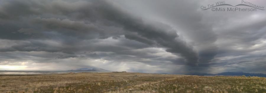 Antelope Island with a storm rolling in