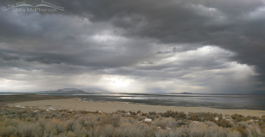 Stormy day on Antelope Island