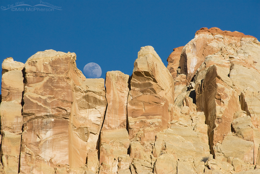 Moon Rise over Capitol Reef National Park