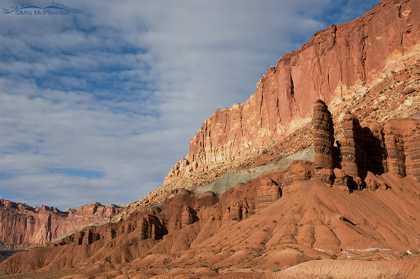 Capitol Reef National Park Rocks!