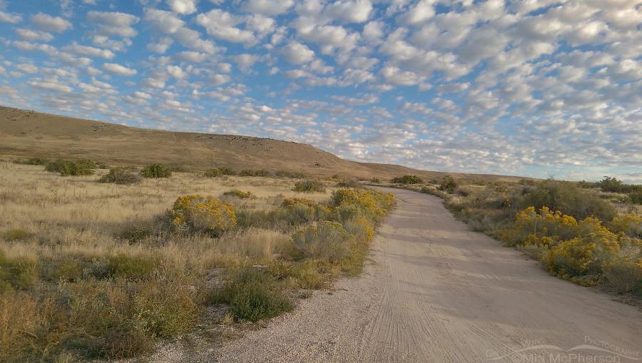 A road near Buffalo Point