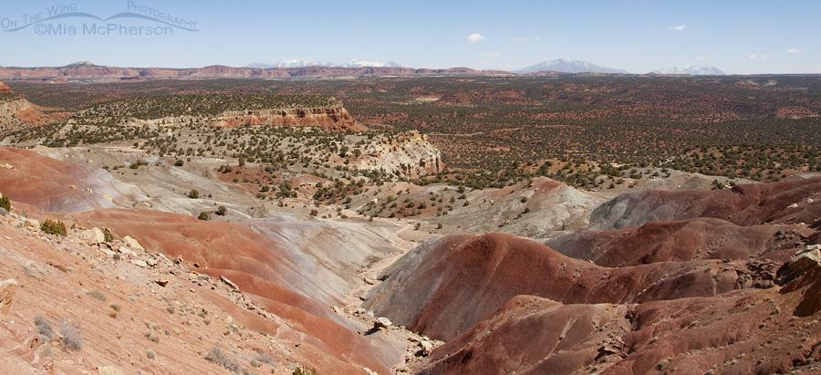 More amazing colors seen at Burr Trail, Utah