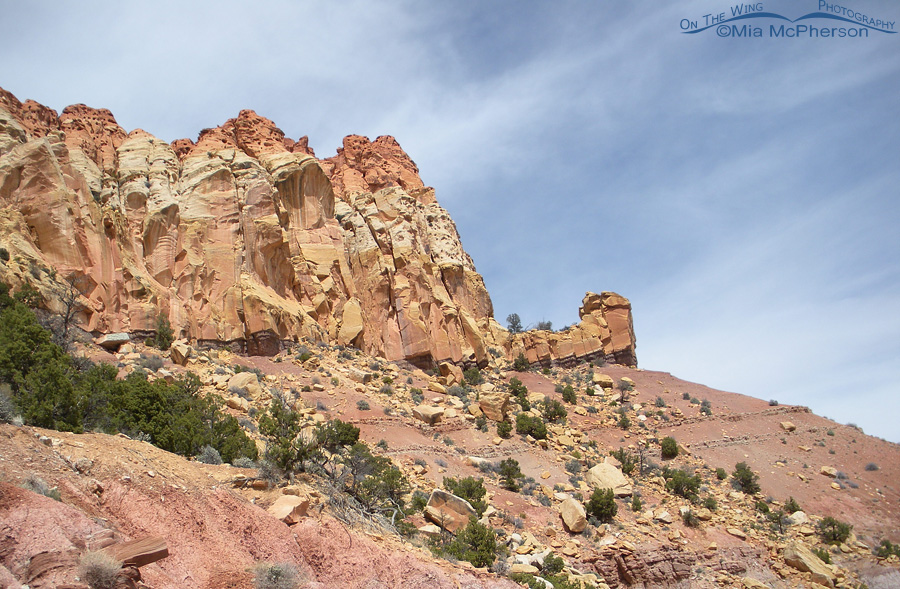 The layers of time show well at Burr Trail