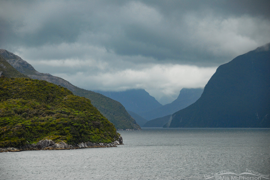 Doubtful Sound under gray skies