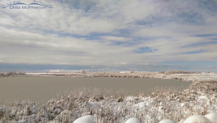 Snow and a frozen marsh at Farmington Bay WMA