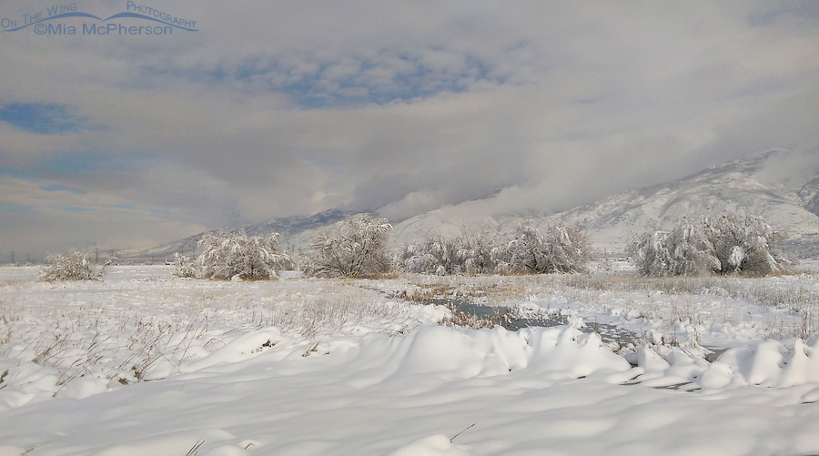 Fresh snows covers Farmington Bay and the Wasatch Range
