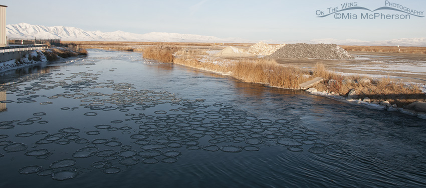 Spinning Circles of Ice in the Bear River