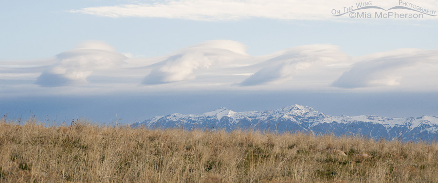 Wave Cloud Formation over snow-capped Wasatch Range