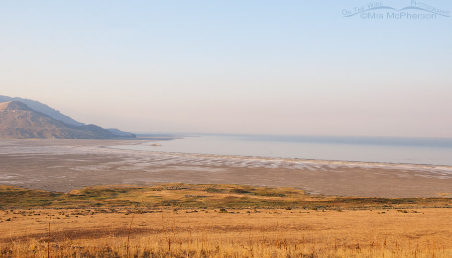 Smoke in the air from Buffalo Point looking towards White Rock Bay, August 21, 2016