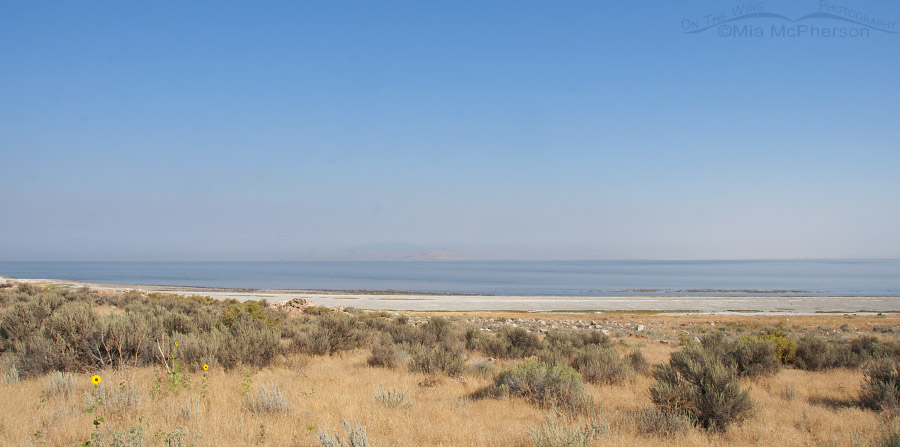 Smokey Skies near Ladyfinger Point at 18mm, August 21, 2016