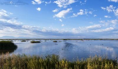 Storm clouds moving towards Bear River Migratory Bird Refuge