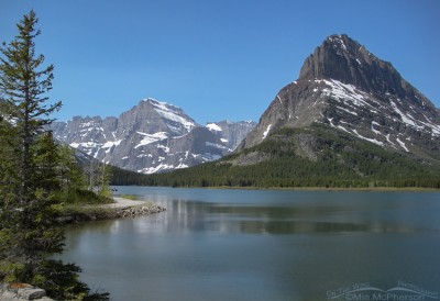 Swiftcurrent Lake - Many Glacier