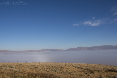 Foggy Centennial Valley from Monida Pass